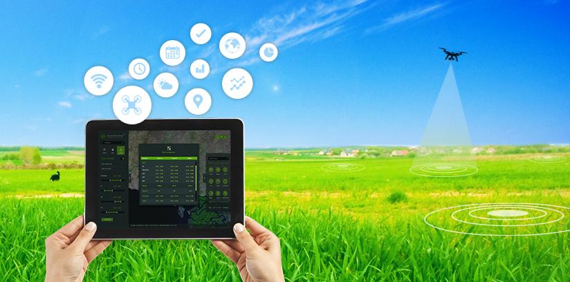 LMKT: Agri-Tech